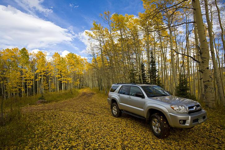 Fall in Colorado-runner-jpg