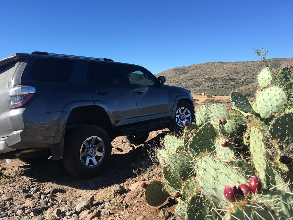 Magnetic Grey 4Runners! Lets see them!-image1-5-copy-jpg