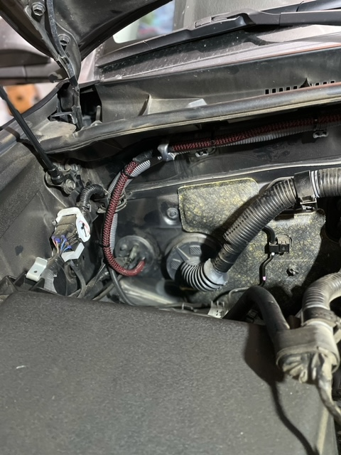 Skids Custom Audio Install-38c24be0-ad92-4aa1-93bc-82ba016a57dc-jpeg
