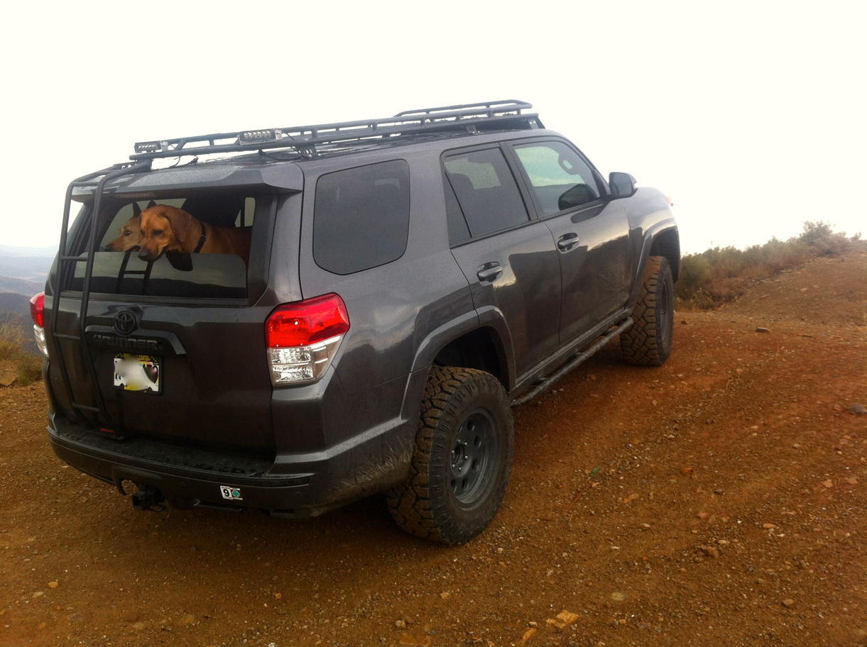 Official 5th Gen T4r Off Road Pics Page 22 Toyota