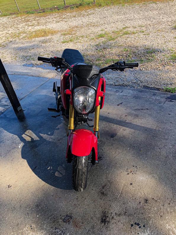 FS: 2015 Honda Grom - minor mods- central florida and south florida. 00 OBO-img_7979-jpg