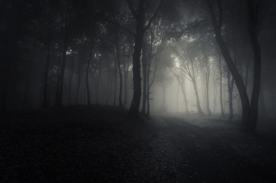 Darkness Isn't For Everyone-adobestock_70954349_53986_900x-jpg