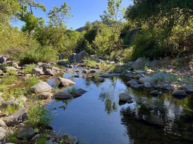 Upper Santa Ysabel Trail - Sun 6/9-img_7289-jpg