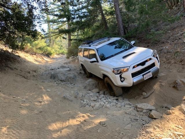 Lytle Creek Trip-trail-jpg